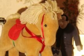 cute poney