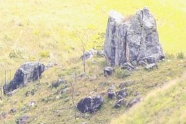 Piedra horquetuda