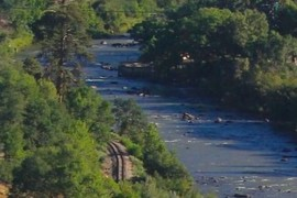 Animas River & RR Tracks