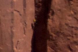 Climber?