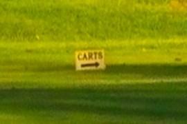 """Carts"" sign"
