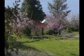 Casa Adorno, Puntagorda