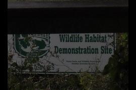 Estero Llano Wildlife Habitat
