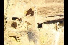 More dwellings