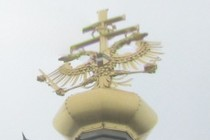 92509-210x140