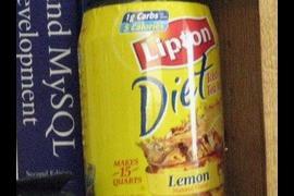 lipton diet