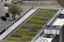 Green rooftop?