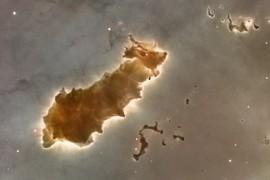 Space Tardigrade