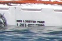 85416-210x140