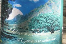 got me a paradise?
