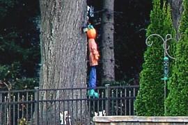 Public Hanging of Pumkinhead