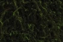120532-210x140