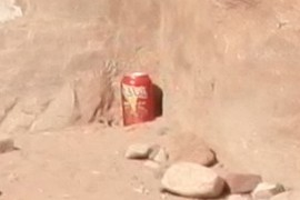 Soda pop can
