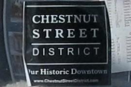 Chestnut Street District