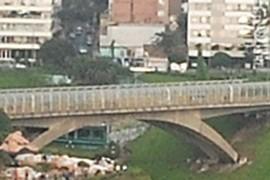 Puente Villena (El Paraiso de los Suicidas)