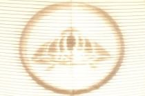 164187-210x140