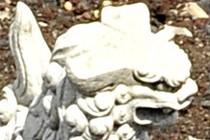 172307-210x140