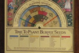 Gardening clock