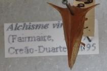 193941-210x140