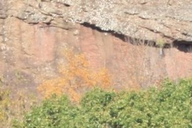 Closeup, Sugarloaf Arkose