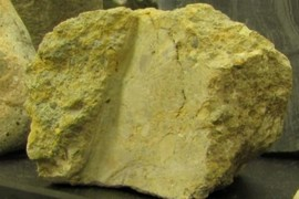 Max Meadows tectonic breccia
