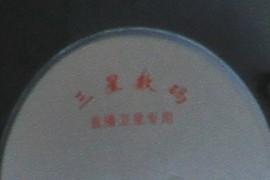 Samsung Digital (in Chinese)