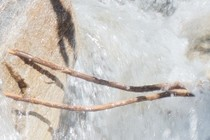 184591-210x140
