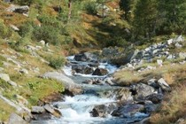 187228-210x140