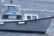 188467-210x140