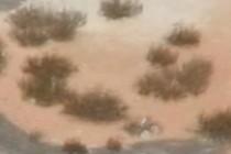 188646-210x140