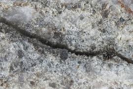 Pseudotachylyte