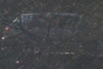 196745-210x140