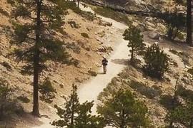 Hiker #2