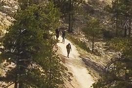 Hikers #3