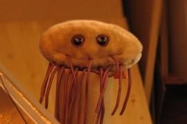 Mr. E. coli