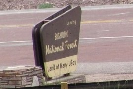 Bighorn National Forest sign