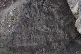Cretaceous shale