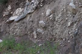 Pleistocene glacial till