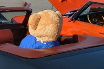 229975-210x140