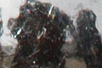 236031-210x140