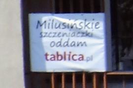 Milusińskie :>)