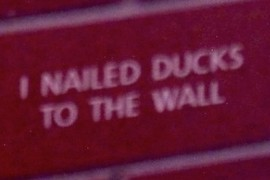 Wall Ducks
