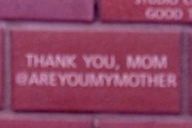 Thank You, Mom